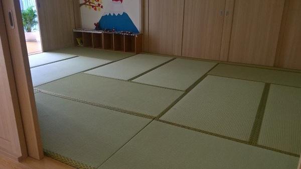 Thảm chiếu Tatami Nhựa Hybrid - màu xanh - loại có viền