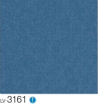LV3161.jpg